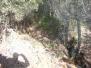 Trincheras de Villamalur